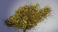 Золото полоска